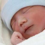 新しい命の誕生